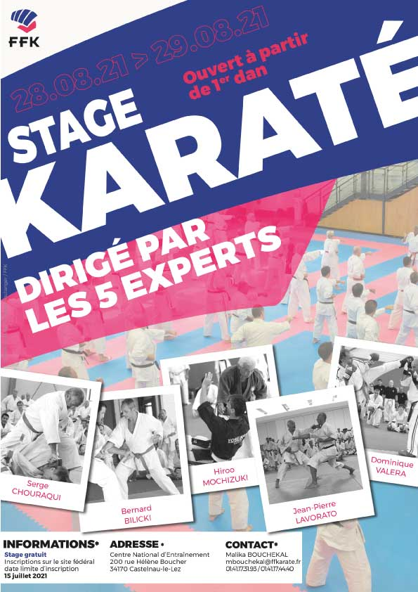 Affiche_StageExperts